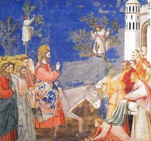 Domenica delle Palme - Un Re al contrario: per culla una mangiatoia .. per scettro un grembiule ... per trono la Croce