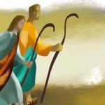 XV  DOMENICA DEL T.O. - L'annunzio non è la costruzione di una dottrina raffinata ma vivere con lo stile di Gesù.